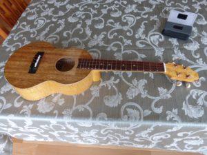 Simple ukulele
